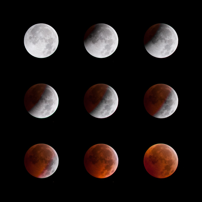 5d6066234538 Lunar Eclipse 2010 - Cow House Studios