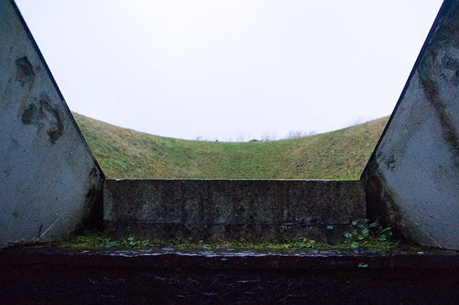 Irish Sky Garden